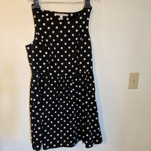 Lauren Conrad Dress Size 12 Polka Dot Fit & Flare
